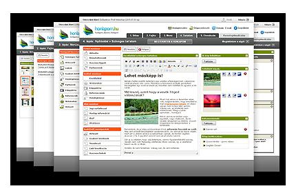 weboldal létrehozása, hogy pénzt keressen